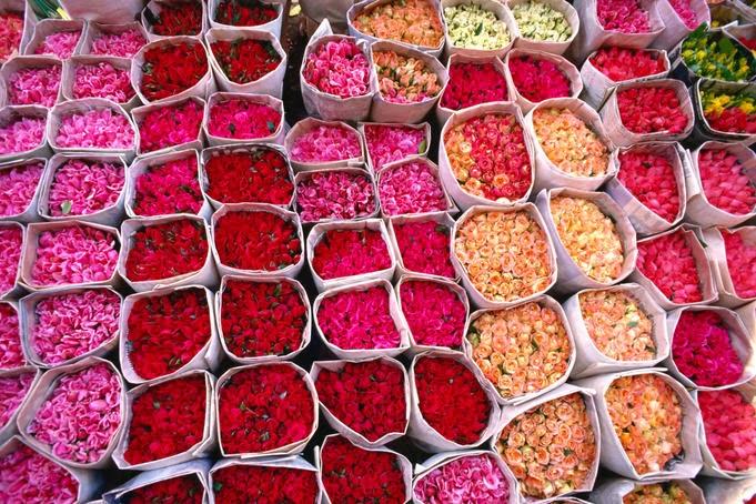 Kelaa-des-Mgouna Rose Festival